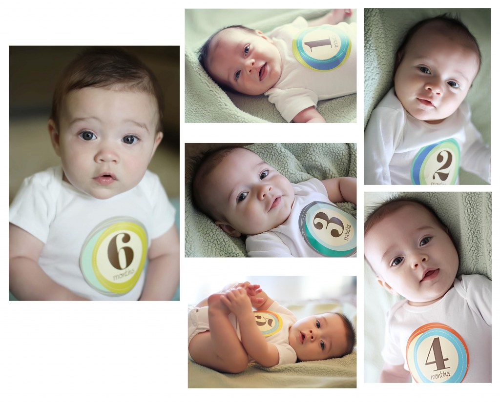 collage pic 6 month